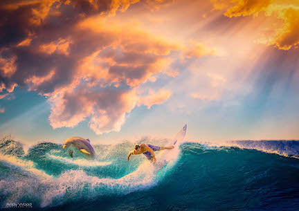 9 Surfer A4