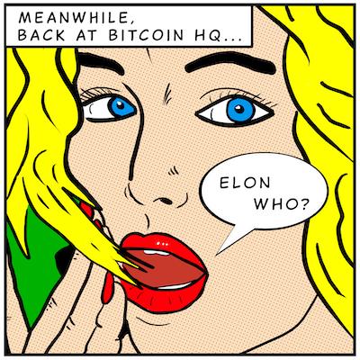 Elon Who sml